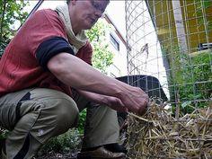 Garten im Hochformat: Kartoffeln wachsen im Turm