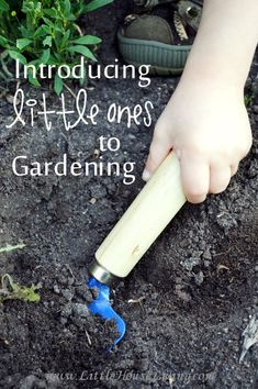 Introducing Little Ones to Gardening - Little House Living