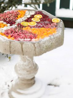 Fruit-Filled Birdbath  Frozen sections of kumquat, cranberries, pepperberries, and polished stones provide a striking contrast to the bright white snow.