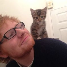 This is a definite problem...I have a mad crush on this boy. And the kitten seals the deal. Love Ed Sheeran