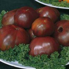 Tomato 'Black Russian' - Heritage - Tomato Seeds - Thompson & Morgan