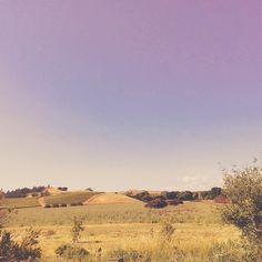 #westcoast #summer2015 #summer #winery #winetasting #winetime #winelover #vino #shiraz #cabernet by malaykato