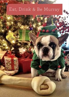 Frenchie holiday card.