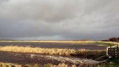 Afbeeldingsresultaat voor soest polder