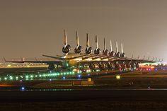 Eight Lufthansa Cargo McDonnell Douglas MD-11F Lineup.