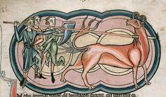 Manticore, basilic... Le bestiaire fantastique du Moyen-Âge