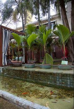 lago das carpas com parede de pedra hijau e queda d'água e vasos de pedra vulcanica dentro da água com plantas