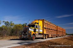 https://flic.kr/p/qdXgPX | Road train on Stuart Highway - Australia | Road train on Stuart Highway - Northern Territory, NT, Australia  Road trains are an integral part of the Australian Outback, just like kangaroos, red dust and endless horizons. The latter can be found in all parts of Australia, but the serious roadtrains, the ones with three or more trailers, are restricted to the Australian Outback regions. They are banned on most roads in the more populated southern and eastern states…