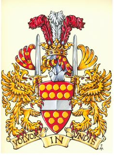 Arms of Albert Michael van der Merwed