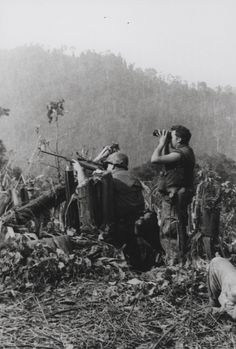 A Marine sniper team with Battalion, Marines opens fire on the enemy while participating in Operation Dewey Canyon. The multi-battalion offensive thrust in the jungles just northwest of. Vietnam History, Vietnam War Photos, Us Marines, Military Photos, Military History, Military Humor, North Vietnam, History Online, American War