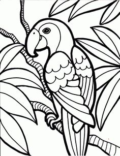 free-coloring-pages-to-print - Bioradar