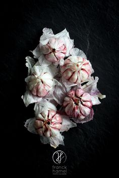 That's the most beautiful photograph of garlic I've ever seen.