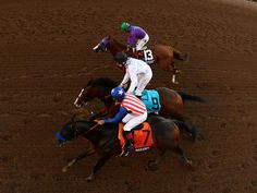 Breeders' Cup Classic 2014 : Bayern edges out Toast Of New York and California Chrome to win the big race.