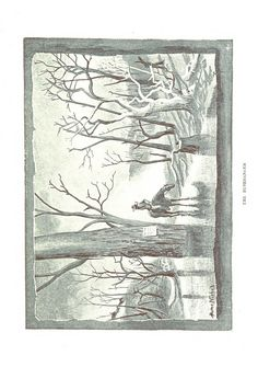 Image taken from page 61 of 'A Colonial Tramp: travels and adventures in Australia and New Guinea' | by The British Library