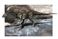 thecodontosaurus - Google-Suche