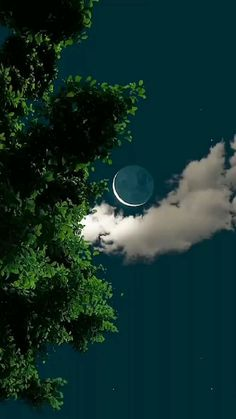Cool Pictures Of Nature, Beautiful Photos Of Nature, Beautiful Nature Wallpaper, Moon Pictures, Rain Photography, Aesthetic Photography Nature, Landscape Photography, Night Sky Photos, Nature Gif