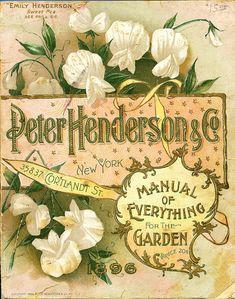 Vintage Floral Guide, 1896