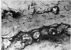 Photo d'un charnier prise par la croix rouge internationale à Katyn en 1943