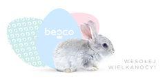 Cały Zespół Besco życzy Państwu zdrowych, pogodnych Świąt Wielkanocnych, radosnego czasu w gronie rodziny i przyjaciół oraz mokrego Dyngusa!