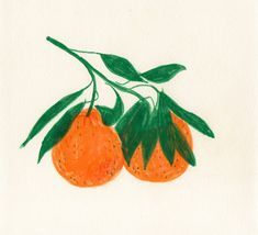 ljegers: More Satsumas from this week. Arte Sketchbook, Look Vintage, Art And Illustration, Art Sketches, Art Inspo, Painting & Drawing, Art Reference, Illustrators, Design Art