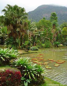Jardim Botânico - Rio de Janeiro - Brasil
