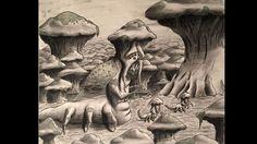 The Mushroom Elder