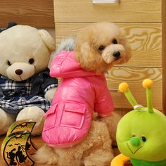 2017 Winter Pet dog Clothes for Small Medium Dog Pet clothing Coat hoodies Waterproof Jacket Super Warm Snow Dress Down & Parkas