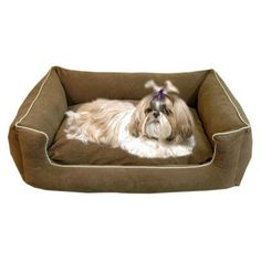 "Carolina Pet Company Timothy Pet Bed Color: Chocolate, Size: Small (30"" L x 24"" W)"