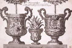 Design for two garden planters, by Daniel Marot   A French Huguenot refugee who was chief Designer for King William IIi and Queen Mary II Stuart of England