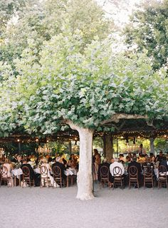 Elegant Outdoor California Wedding via oncewed.com
