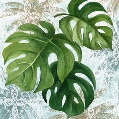 Philodendron Leaves Light 1 by Elena Vladykina