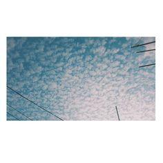 Beautiful sky  . . . . . . . . . . . . . . . .  #sky #clouds #nature #beautiful #naturebeauty #alexandria #egypt #thisisegypt #whiet #blue #landscape #landscapelover #landscapelovers  #landscaper #landscapers #landscapephotography #s7edgephotography #samsungphotographs #samsungphotography #vsco #vscocam #picsart  #follow4follow #insta #instagram #photo