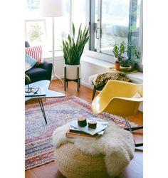 Veja para quais ambientes da casa elas são indicadas e que outros benefícios elas trazem