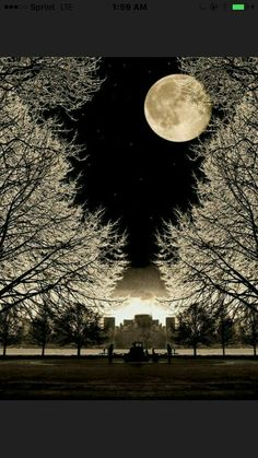 Moon This is so gorgeous! Nature wow she's so lovely and breathtaking! Especially, Beautiful Moon Pretty Pictures, Cool Photos, Beautiful Moon Pictures, Beautiful World, Beautiful Places, Trees Beautiful, House Beautiful, Shoot The Moon, Photos Voyages
