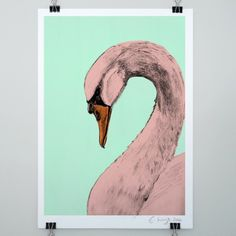 Swan print - Evie Kemp