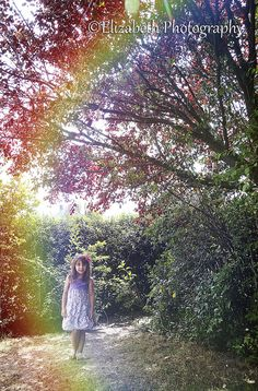 enchanted forest www.lizphoto530.com