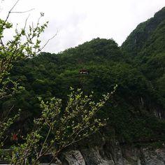 #taiwan #taroko
