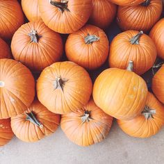 Are these enough pumpkins???