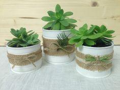 Barattoli di latta decorati per trasformarli in deliziosi vasetti stile shabby chic per piante grasse
