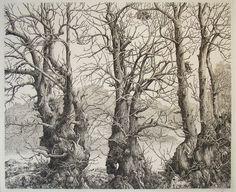 Drie bomen by Marten Hazelaar, via Flickr.    etching by Dirk Van Gelder [1907-1990] 29x23cm.
