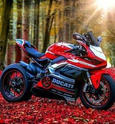 Yamaha Sport, Ducati Monster Custom, Motorbike Design, Teacup Puppies, Sportbikes, Motorcycle Bike, Bike Life, Custom Bikes, Cool Bikes