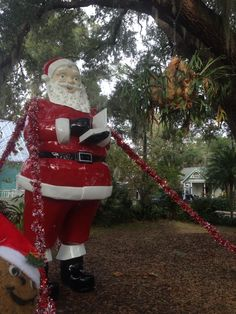 Swampy's Florida Live: Only in #Florida would you find a giant Santa and a giant staghorn fern together!