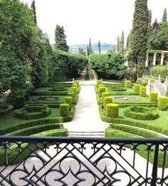 The magnificent Gardens of Pojega from the balcony of Villa Rizzardi Negrar di Valpolicella near Verona, Italy // . . . #CarterandCo #interiordesign #verona #italy #gardens #photooftheday  via ✨ @padgram ✨(http://dl.padgram.com)