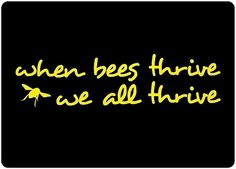 Do you realize how many plants, fruits and veggies are pollinated by bees, they are very important to our lives