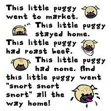 #pug #humor #cute