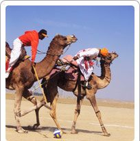 Adventure Sports of Rajasthan - With incorporating rajasthan adventure tour in your itinerary you can maximizes the joy and ecstasy of your rajasthan tour.