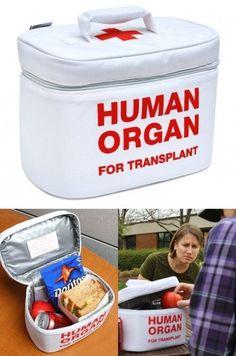 Organ Transport Frokost Cooler