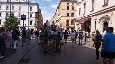 Mit einer Pferdekutsche durch die Stadt