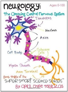 Neurology: The Amazing Central Nervous System (Super Smart Science Series) by April Chloe Terrazas Brain Anatomy, Medical Anatomy, Human Anatomy And Physiology, Medical Coding, Medical Technology, Technology Careers, Nervous System Anatomy, Nursing School Notes, Brain Science
