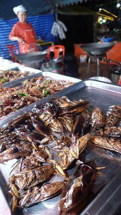 Fried cockroaches in Thailand! #Bangkok http://www.globehunters.com/Flights/Bangkok-Flights.htm